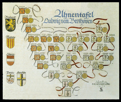 Family tree realized by Schmidt Görg...